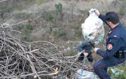 Filmato mentre scarica rifiuti in area Parco e sanzionato