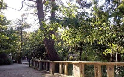 'Parchi cittadini terra di nessuno', Lega protesta a Chieti