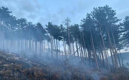 Parco Maiella brucia da 4 giorni, ancora Canadair in azione