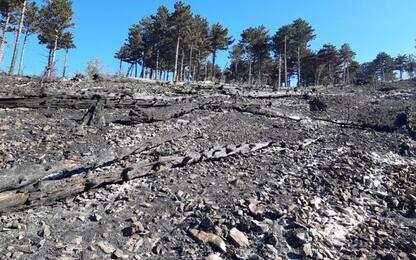 Incendi, il Parco nazionale della Maiella brucia da 6 giorni, in fumo 100 ettari