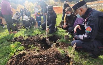 Alunni Alfedena e Avezzano piantano il loro 'bosco diffuso'