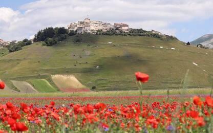 Ancora boom di visitatori a Castelluccio