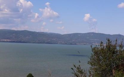Aumentano uccelli acquatici in zone umide Umbria