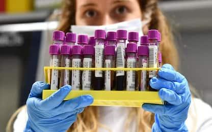 Coronavirus: in Basilicata un altro giorno senza contagi