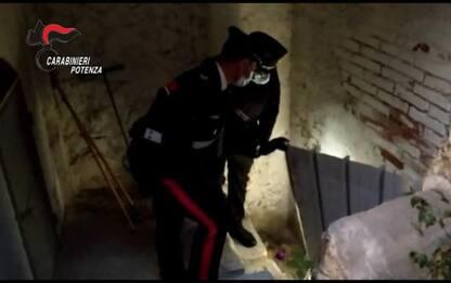Mafia: latitante preso a Melfi, nascosto in centro storico