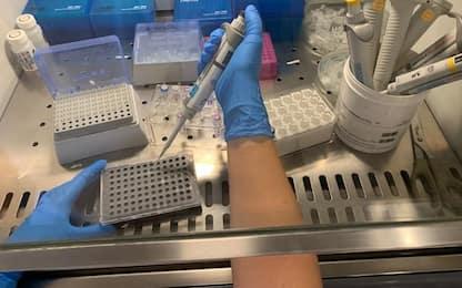 Coronavirus: nessun decesso in Trentino, ma due nuovi casi