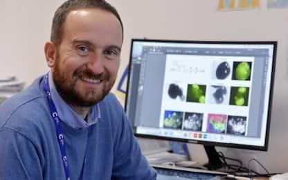Ricerca: Luca Tiberi miglior scienziato europeo under 40