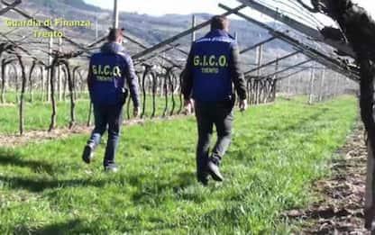 Criminalità: Uif,+47% operazioni sospette segnalate in Tn-Aa