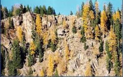 In Trentino novembre più caldo e meno piovoso della media