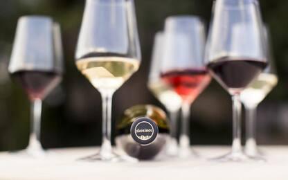 Vino: guide enologiche premiano l'Alto Adige
