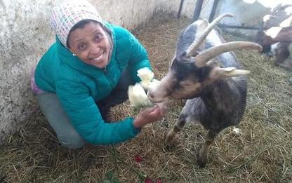 Agitu: Moltrer, il problema delle capre era risolvibile