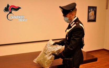 Carabinieri Trento arrestano 2 persone con 1 kg di marijuana