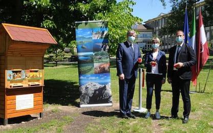 Arnie slovene donate alla Fondazione Mach