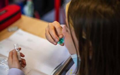 Covid: scuole in Alto Adige, 184 finora gli alunni positivi