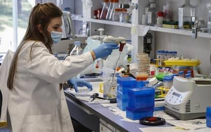 Covid: Fvg, 210 nuovi casi su 7442 test e tamponi; 9 decessi