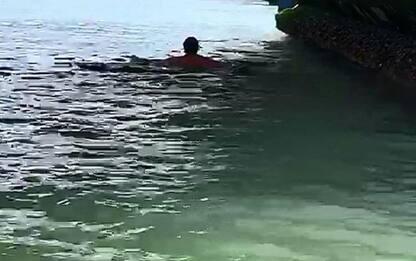 Venezia,turisti fanno bagno Canal Grande