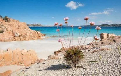 "Mare: ""tranquilla"" e ""sicura"", Sardegna regina ranking Jfc"
