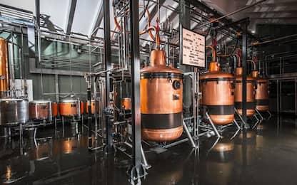 Luxardo inaugura nuova distilleria 4.0
