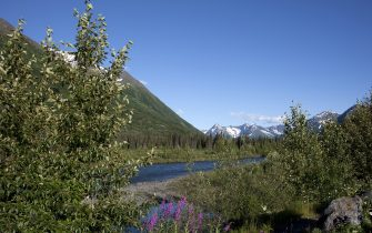 UNITED STATES - SEPTEMBER 16:  Scenic view from the Seward highway in the Chugach National Forest, Alaska (Photo by Carol M. Highsmith/Buyenlarge/Getty Images)