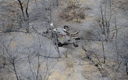Botswana, morti oltre 350 elefanti: le cause sono un mistero. FOTO