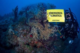 Greenpeace placed a temperature monitoring station at Elba island, in the area of the Pelagos Sanctuary, and worked in partnership with the University of Genova to study the impact of climate change on underwater coastal biodiversity. First project results' indicate raising temperature are killing iconic underwater organisms as protected pen shell Pinna nobilis and colonies of the sea-fan gorgonia (Paramuricea clavata) and favouring unusual mucilage events that cover completely the substrate suffocating organisms.