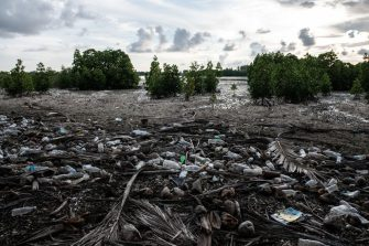 HITHADHOO, MALDIVES - DECEMBER 14: Plastic waste litters the shoreline in Koattey wetlands on December 14, 2019 in Hithadhoo, Maldives. The neighbouring Koattey and Eydhigali Kilhi wetlands are among the largest wetlands in the Maldives and have become integral to the countrys EU and Australia-funded Climate Change Adaptation Project to preserve and manage the wetlands and utilise them as a natural defence against floods and rising seas. The wetlands can store several tens of million cubic meters of water, act as barriers against rising sea levels and flooding caused by extreme weather events, they also contribute to waste water management, groundwater recharge, freshwater storage, and purify water that flows through their systems. Plants found here are critical in controlling erosion. Along with coral reefs, wetlands are the primary defence that a small island nation like the Maldives has against climate change. (Photo by Carl Court/Getty Images)