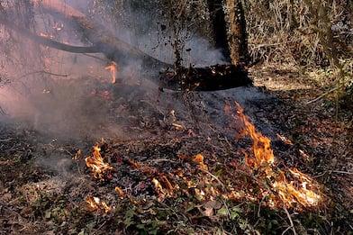 Canada, incendi nella Columbia Britannica: evacuazione a Lytton