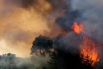 ©masini/lapresse 16/02/2005 genova/italia cronaca nella foto: vasto incendio che nella notte a fatto danni e feriti sulle alture di Genova Pegli