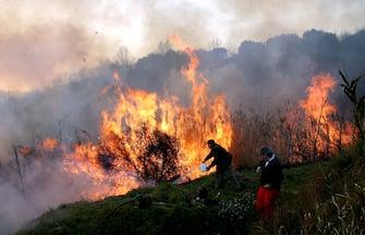 ©Masini/Lapresse18-02-2005 Albisola (SV) frazione Luceto, ItaliaInterniIncendio sulle colline di AlbisolaNella foto: scene dell'incendio