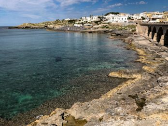 """In Calabria, il Mar Ionio invaso da meduse: """"Più caldo e pulito"""""""