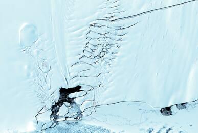 Antartide, scioglimento ghiacciai: allarme dai satelliti dell'Esa