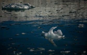 LONGYEARBYEN, NORWAY - AUGUST 25: Ice melts near  Nordenskjodbreen glacier on August 25, 2020 on the Norwegian Arctic Svalbard archipelago, Norway. Nordenskiöldbreen (Nordenskiöld Glacier) is a glacier in Spitsbergen, named after Finnish geologist Adolf Erik Nordenskiöld (Photo by Maja Hitij/Getty Images)