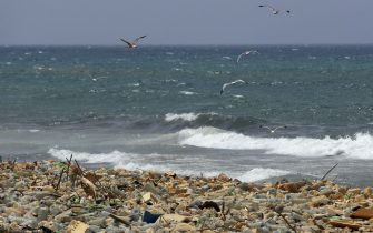 Seagulls search for food near a sewage discharge area next to piles of plastic bottles and gallons washed away by the water on the seaside of Ouzai, south of Beirut on July 19, 2018. - Many Lebanese nationals are refraining from heading to the beach this summer after reports about high levels of pollution along the country's Mediterranean coast, despite reassurances from government officials that the beaches remain safe. (Photo by JOSEPH EID / AFP)        (Photo credit should read JOSEPH EID/AFP via Getty Images)