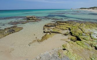 Rocks emerging from the sea near the shore of Pilone with the San Leonardo Tower in the background, Coastal Dunes Natural Park from Torre Canne to Torre San Leonado, near Ostuni, Apulia, Italy.