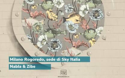 Giornata mondiale degli Oceani, Worldrise Onlus con Sky Italia