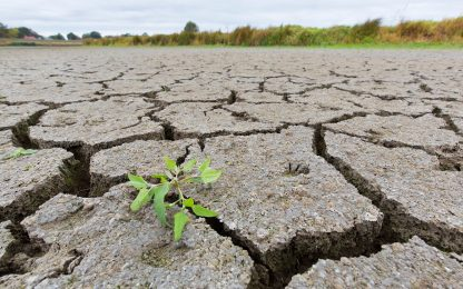 Clima, in 40 anni raddoppiati i giorni con temperature sopra 50 gradi