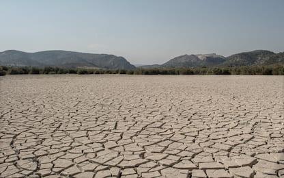 Giornata mondiale per la lotta alla desertificazione e alla siccità