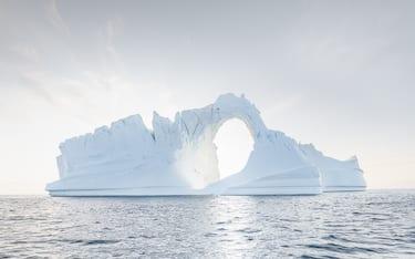 sandra iceberg hero