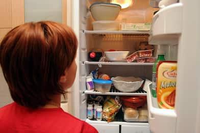 Ricostruito il processo cerebrale che scatena la fame: lo studio