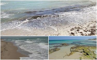 Alcune delle spiagge pugliesi a cui sono state assegnate le Bandiere Blu