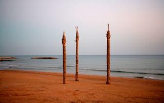 palms on the beach, marina di ragusa, sicily, italy