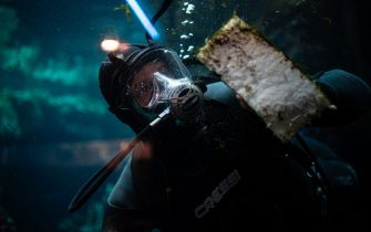 A diver cleans the glass at the Aquarium of Genoa, Liguria, on May 22, 2020, as the country eases its lockdown after over two months, aimed at curbing the spread of the COVID-19 infection, caused by the novel coronavirus. - The Genova Aquarium is set to reopen on May 28 after over two months of lockdown. (Photo by MARCO BERTORELLO / AFP) (Photo by MARCO BERTORELLO/AFP via Getty Images)