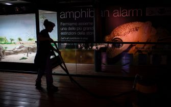 An employe cleans the floor the Aquarium of Genoa, Liguria, on May 22, 2020, as the country eases its lockdown after over two months, aimed at curbing the spread of the COVID-19 infection, caused by the novel coronavirus. - The Genova Aquarium is set to reopen on May 28 after over two months of lockdown. (Photo by MARCO BERTORELLO / AFP) (Photo by MARCO BERTORELLO/AFP via Getty Images)