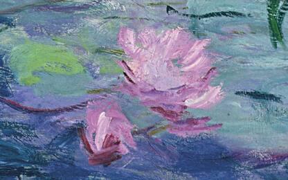 Genova, 5 minuti con le Ninfee di Monet a Palazzo Ducale