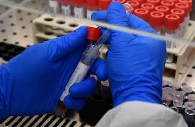 Coronavirus in Piemonte, 14 nuovi contagi e cinque decessi