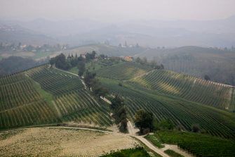 CUNEO, ITALY - OCTOBER 06: A view of the vineyards in Barolo production area on October 6, 2009 in Novello, near Cuneo, Italy. Barolo wine is produced in Cuneo province within the Piedmont region of Italy. Originally created in the mid eighteenth century by French oenologist Louis Oudart, Barolo wine is made solely from the Nebbiolo grape with best results generally delivered when grown on sheltered south facing, well-drained calcareous sites found in the region. (Photo by Massimo Di Nonno/Getty Images)