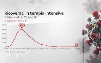 coronavirus, grafiche