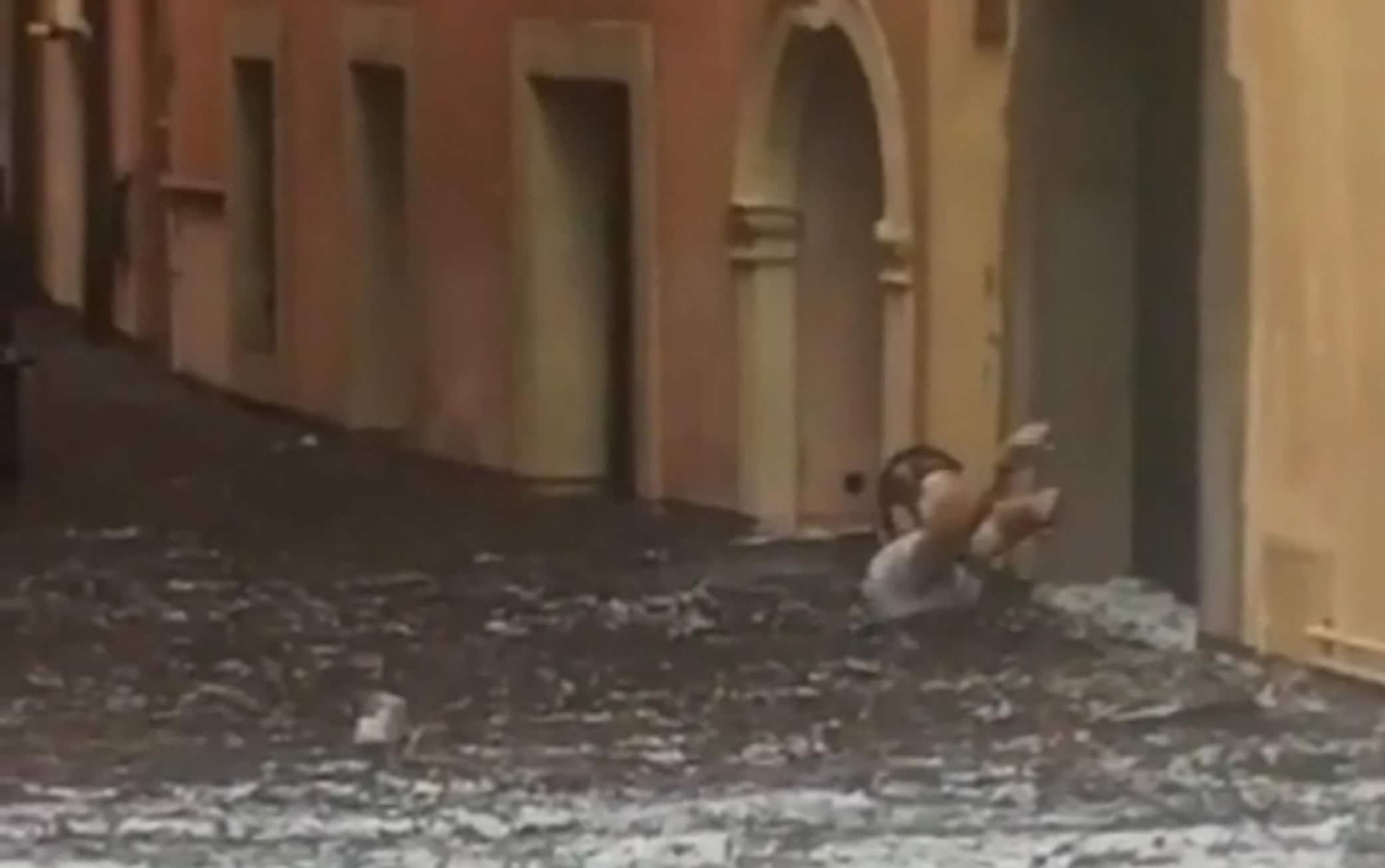 Nubifragio a Verona, strade sommerse da acqua e ghiaccio: il video choc