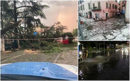 """Maltempo Veneto, si contano i danni. Zaia: """"Ho visto devastazione"""""""