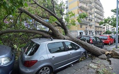 Maltempo in Italia, tromba d'aria a Rosignano e scuole chiuse a Napoli